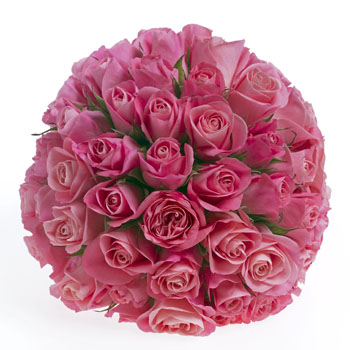 Posy of Pink Roses