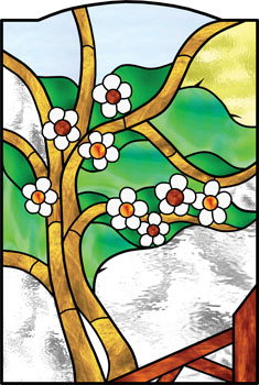 Hawthorn - Stained Glass