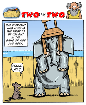 Elephant playing Hide and Seek - Two by Two