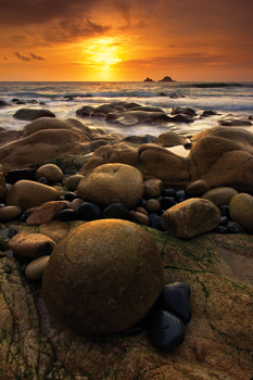 Pure Gold - Nanven, Cornwall