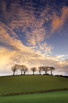 Seven on the Hill, Exmoor