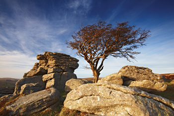 Saddle Tor, Dartmoor