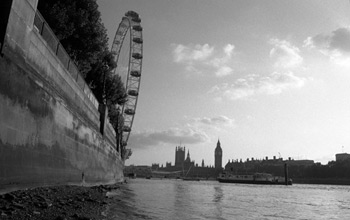 Parliament from the Shoreline, River Thames