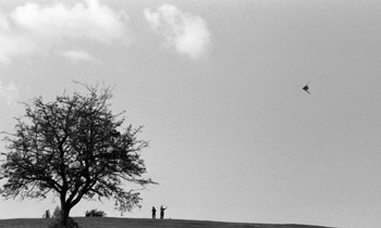 Kite-flying, Hampstead Heath