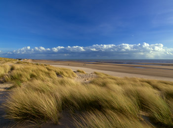 Sand Dunes, Camber Sands, East Sussex