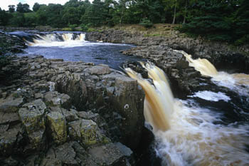 Low Force Waterfall, County Durham