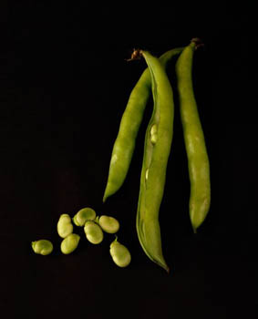 Broad Beans on Black