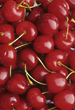 Red Cherries