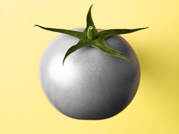 Silver Tomato on Pale Yellow