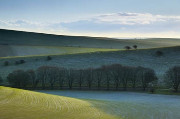 Undulating South Downs