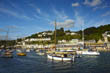 A River View - Looe Harbour, Cornwall