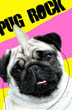 Pug Rock Portrait