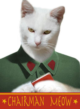 Chairman Meow Blinds Creatively Different