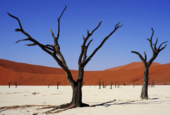 Scorched Earth - Namibia, Africa