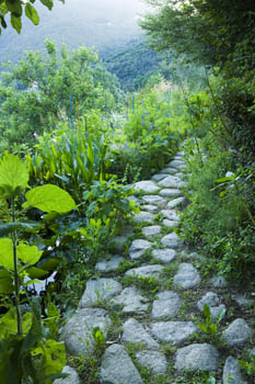 Rock Path Leading To Homage To The Dordogne Jardin Des