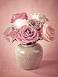 Roses in Vase on Pink