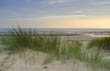 Late in the Day - Camber Sands Dunes