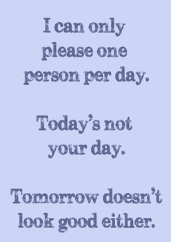 I can only please one person per day blinds creatively for I can only please one person per day t shirt