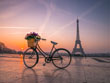 Bicycle with Basket of Flowers and Eiffel Tower, Paris (L)