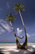 Man lying in Hammock, Boracay Island, Phillipines