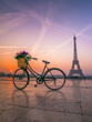 Bicycle with Basket of Flowers and Eiffel Tower, Paris