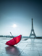 Red Umbrella with Eiffel Tower, Paris (1)