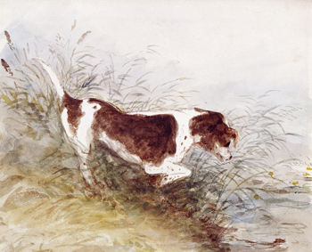 Dog watching Rat at Dedham by John Constable