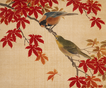Two Birds perching on Red Maple